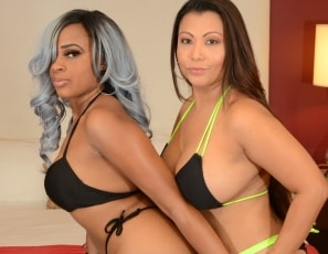 WillTileXXX/Double the Pleasure